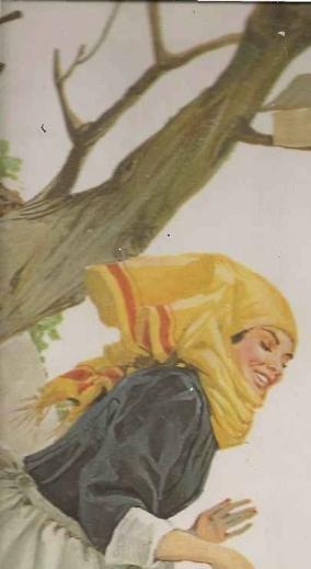 Chapeuzinho vermelho, conto de fada infantil
