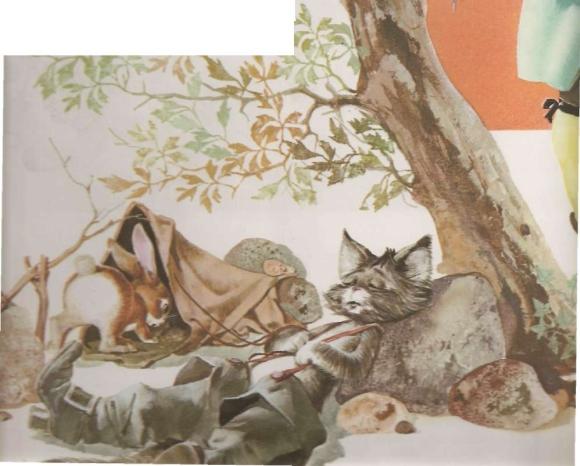 Gato de Botas de Perrault, conto infantil