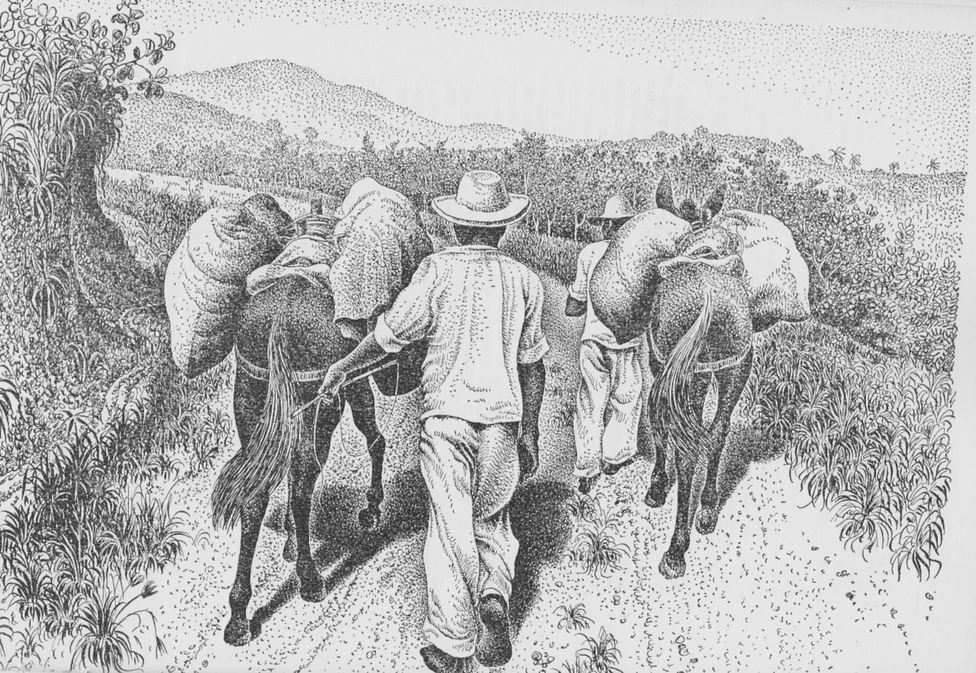 Ilustração de Percy Lau sobre a obra Brazilien de Peter Fuss.