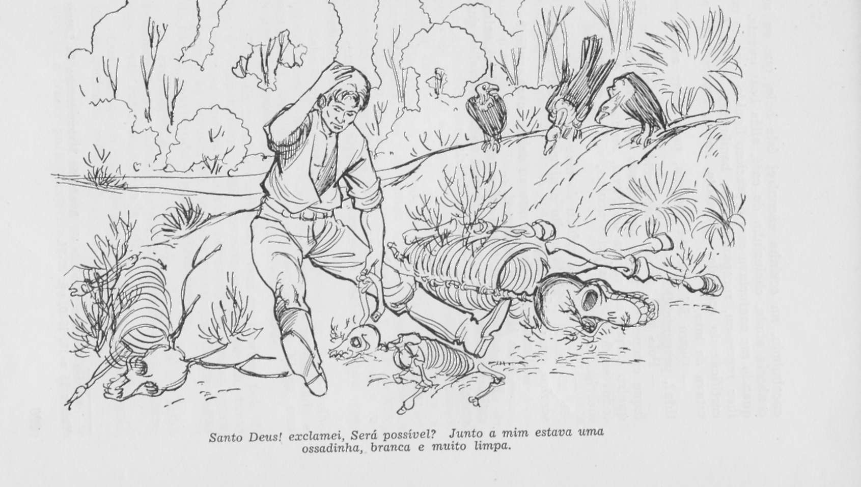 Gombé – história curta de lenda do mato grosso