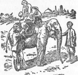Pedro foi à África com seu tio Guilherme