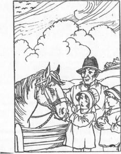 O velho cavalo é muito estimado
