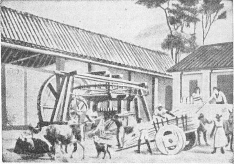 Processo primitivo de fabricação de açúcar.