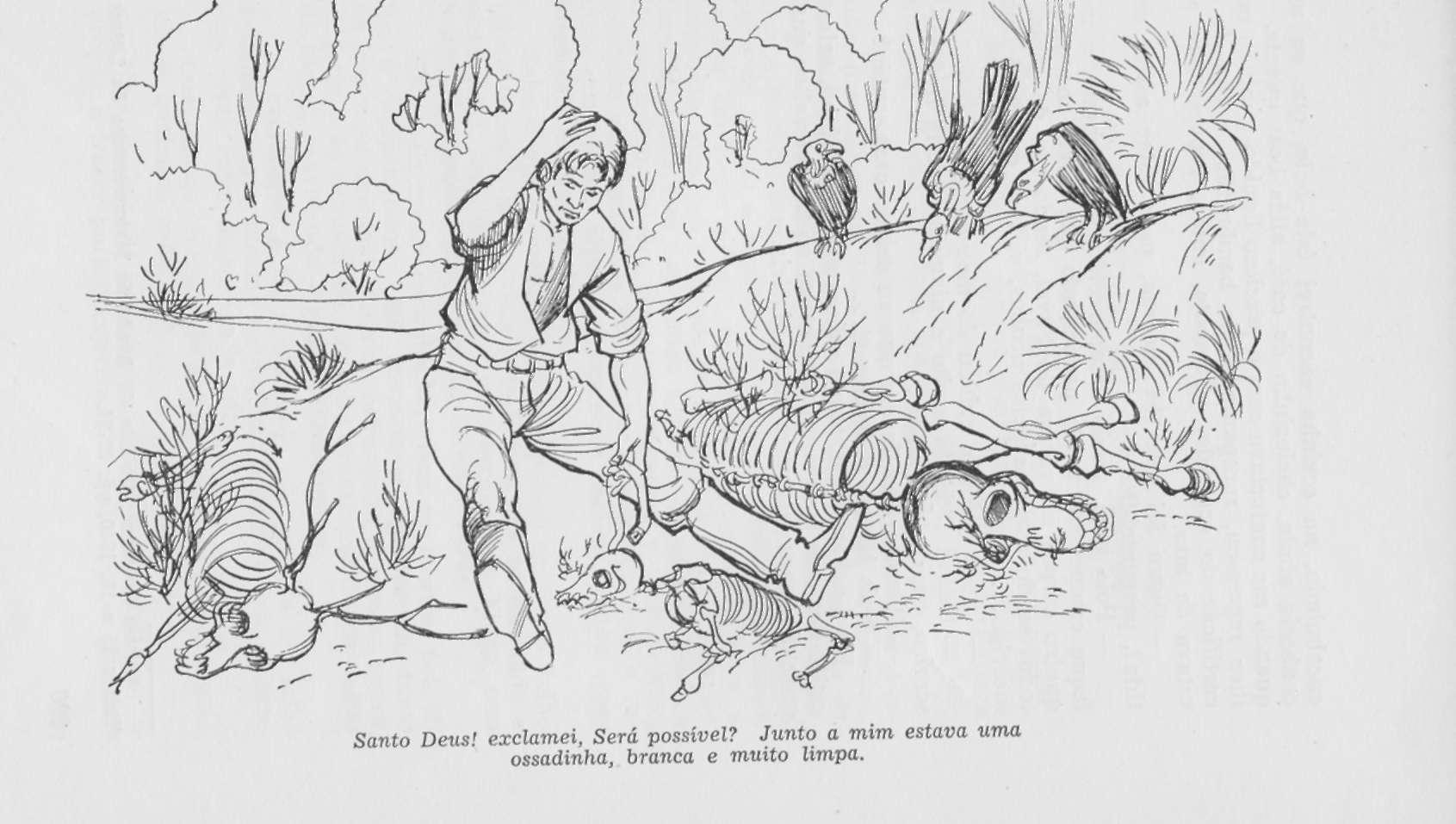 ilustração ossada urubu