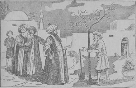 califa islâmico
