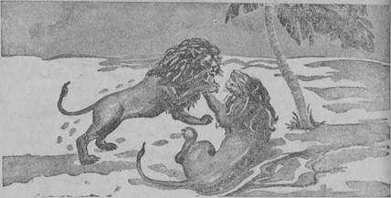 dois leões, fábula de Florian