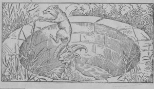 a raposa e o bode, fábula de esopo