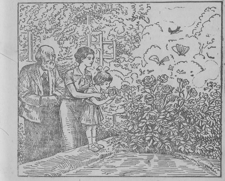 floricultura, jardinagem